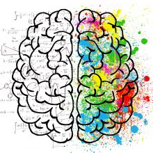 The creative-right vs analytical-left brain myth: debunked!